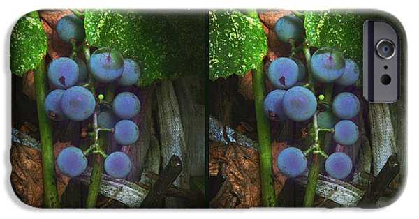 Concord Digital Art iPhone Cases - Grapes On The Vine - Gently cross your eyes and focus on the middle image iPhone Case by Brian Wallace