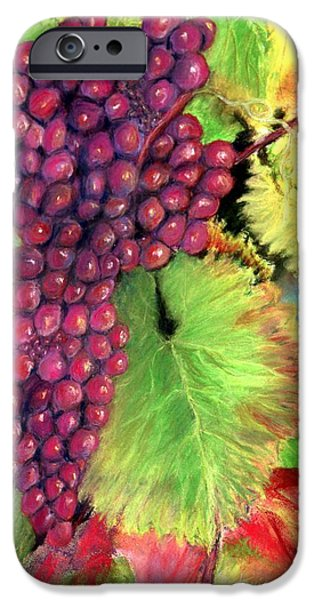 Red Wine Pastels iPhone Cases - Grapes on Vine Pastel iPhone Case by Antonia Citrino