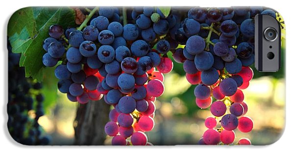 Industry iPhone Cases - Grapes with bokeh iPhone Case by Lynn Hopwood