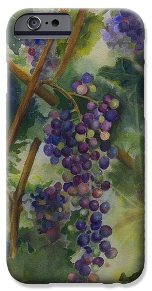 Vineyard Art iPhone Cases - Baby Cabernets II   triptych iPhone Case by Maria Hunt