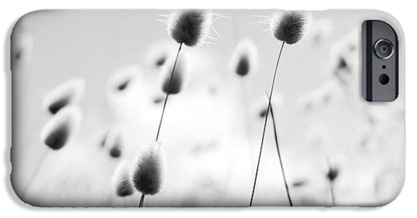 Fleurieu Peninsula iPhone Cases - Grass Field Black and White iPhone Case by Tim Hester