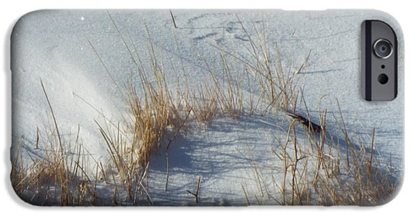 Snow Scene iPhone Cases - Grass In The Snow iPhone Case by Caryl J Bohn