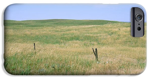 Nebraska iPhone Cases - Grass On A Field, Cherry County iPhone Case by Panoramic Images