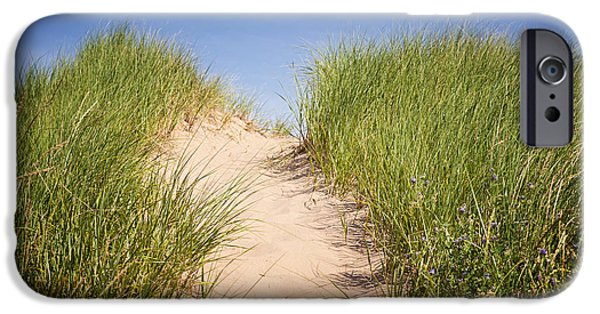 North Rustico iPhone Cases - Grass on sand dunes iPhone Case by Elena Elisseeva