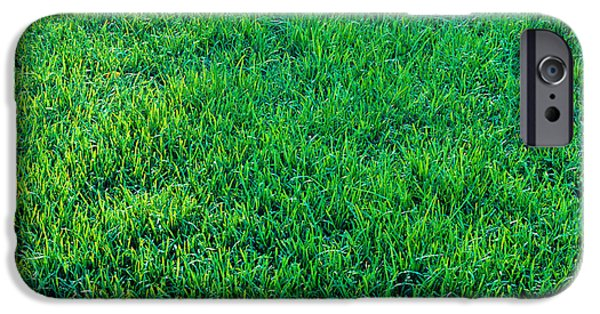 Green Lawns iPhone Cases - Grass Sacramento Ca Usa iPhone Case by Panoramic Images