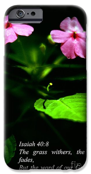 Grass Withers Flowers Fade iPhone Case by Thomas R Fletcher