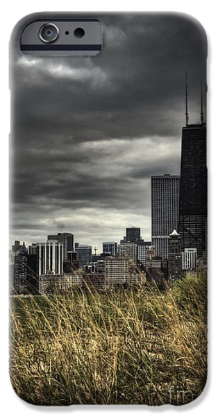 Engulfing iPhone Cases - Grasses Along the Skyline iPhone Case by Margie Hurwich