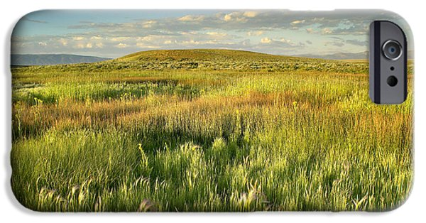 Arapaho iPhone Cases - Grasslands  Arapaho NWR iPhone Case by Tim Fitzharris