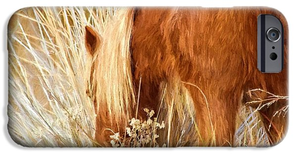 Horse iPhone Cases - Grazing On Beach Grasses iPhone Case by Alice Gipson