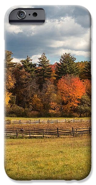 Grazing on the Farm iPhone Case by Joann Vitali