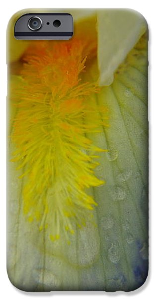 GREAT BEAUTY IN TINY PLACES iPhone Case by Jeff  Swan