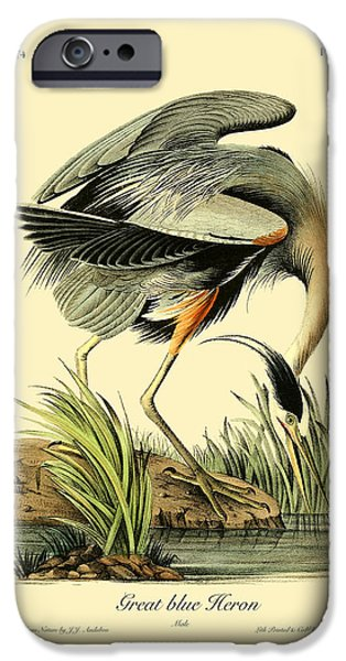 Antiques iPhone Cases - Great Blue Heron iPhone Case by Gary Grayson