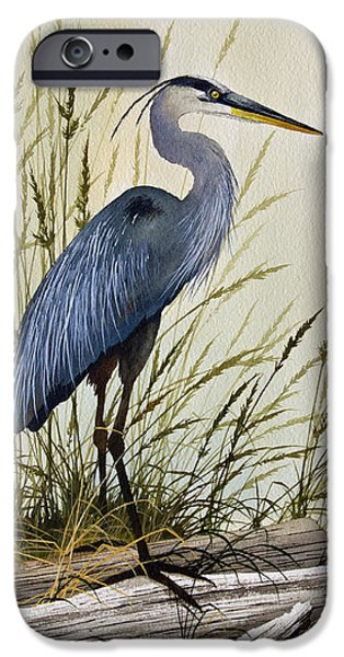 Images Paintings iPhone Cases - Great Blue Heron Splendor iPhone Case by James Williamson