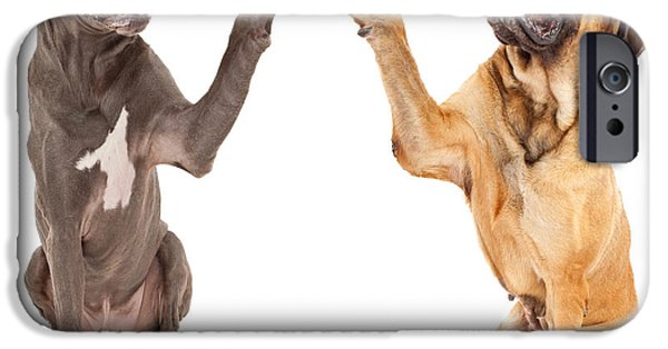 Mastiff Dog iPhone Cases - Great Dane and Mastiff Dogs Shaking Hands iPhone Case by Susan  Schmitz