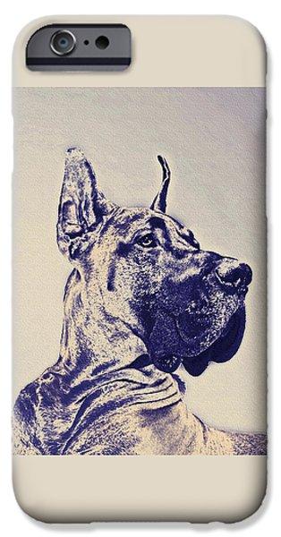 Pet Portraits Digital Art iPhone Cases - Great Dane- Blue Sketch iPhone Case by Jane Schnetlage
