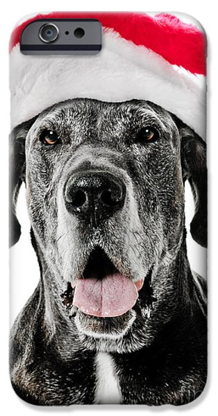 Great Dane Puppy iPhone Cases - Great Dane Santa iPhone Case by Jt PhotoDesign