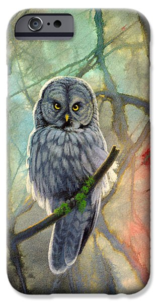 Great Grey Owl in Abstract iPhone Case by Paul Krapf