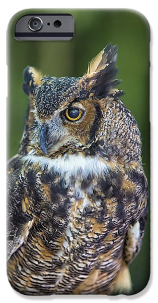 Owls iPhone Cases - Great Horned Owl iPhone Case by Bill Tiepelman