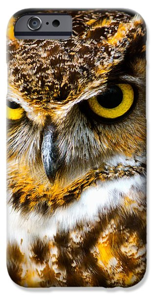 The Tiger iPhone Cases - Great Horned Owl  iPhone Case by Parker Cunningham
