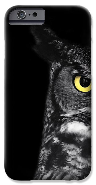 Bird Of Prey Art iPhone Cases - Great Horned Owl Photo iPhone Case by Stephanie McDowell