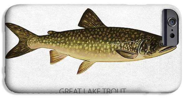 Fresh Water Fish iPhone Cases - Great Lake Trout iPhone Case by Aged Pixel