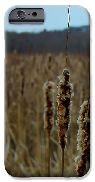 Concord. Winter iPhone Cases - Great Meadows iPhone Case by Jeff Heimlich