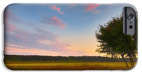 Concord Massachusetts iPhone Cases - Great Meadows Late Summer Setting iPhone Case by Sylvia J Zarco