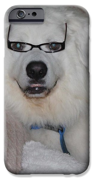 Great Pyrnesse Relaxing with His New Reading Glasses iPhone Case by JOHN TELFER