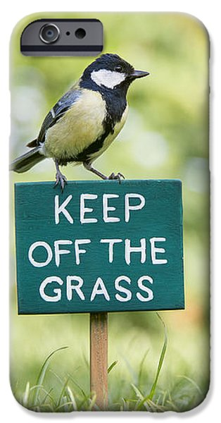 Great Tit on a Keep Off The Grass Sign iPhone Case by Tim Gainey