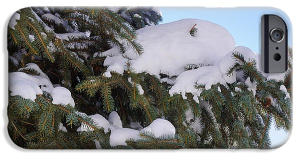 Snow iPhone Cases - Green and white iPhone Case by Gloria Pasko