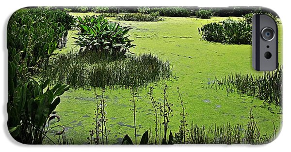 Nature Center Pond iPhone Cases - GREEN Cay Wetlands iPhone Case by MTBobbins Photography