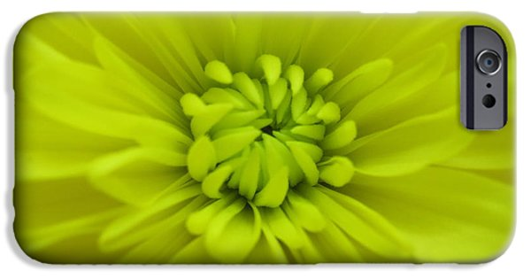 Nature Study iPhone Cases - Green Dahlia Abstract 2 iPhone Case by Tara  Shalton