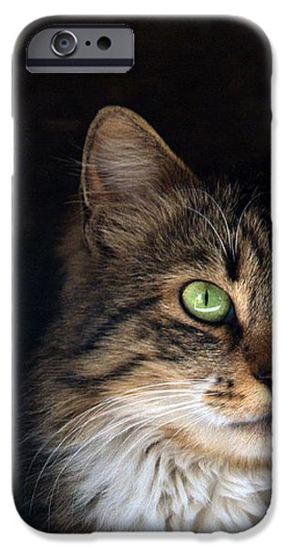 green eyes iPhone Case by Stylianos Kleanthous
