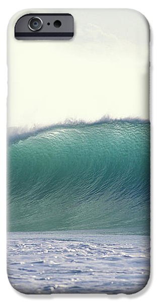 Green Feather iPhone Case by Sean Davey