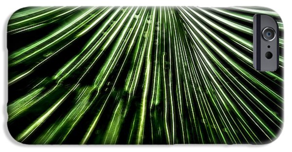 Connect Mixed Media iPhone Cases - Green Fibers iPhone Case by Dan Sproul