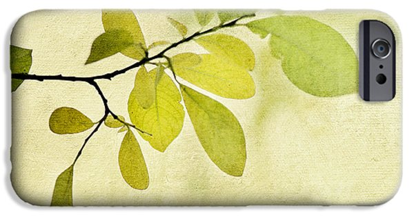 Botanical iPhone Cases - Green Foliage Series iPhone Case by Priska Wettstein