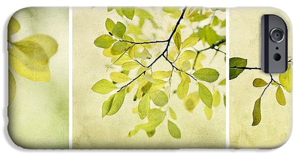 Foliage iPhone Cases - Green foliage triptychon iPhone Case by Priska Wettstein