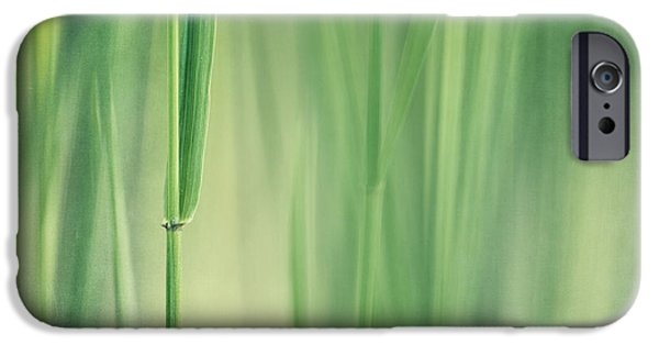 Botanical Photographs iPhone Cases - Green Grass iPhone Case by Priska Wettstein