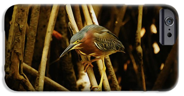 Fauna Digital Art iPhone Cases - Green Heron iPhone Case by Aged Pixel