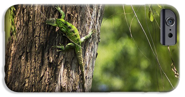Iguana iPhone Cases - Green Iguana iPhone Case by Aged Pixel