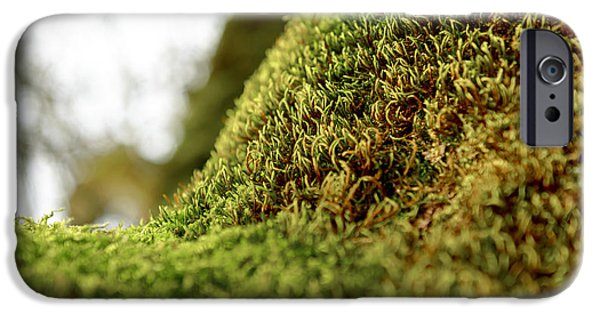 Close Up Floral Pyrography iPhone Cases - Green moss on tree trunk iPhone Case by Oliver Sved