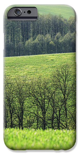 Green peace iPhone Case by Davorin Mance