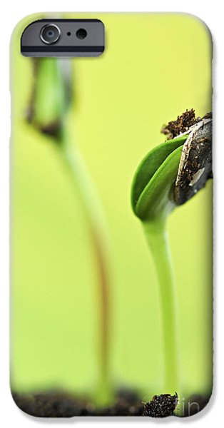 Grow iPhone Cases - Green sprouts iPhone Case by Elena Elisseeva