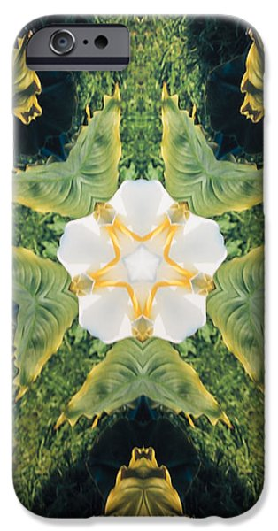 Computer Design iPhone Cases - Green Thing iPhone Case by Barbara Snyder