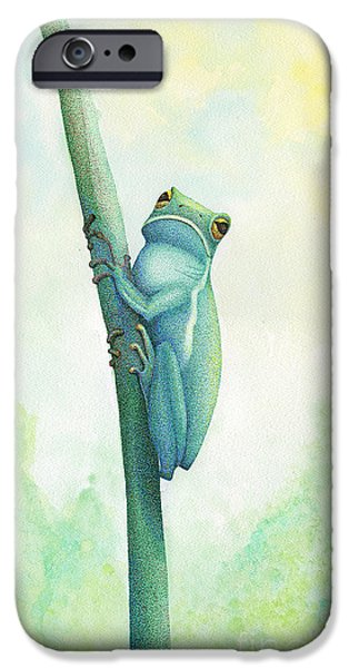 Pen And Ink iPhone Cases - Green Tree Frog iPhone Case by Wayne Hardee