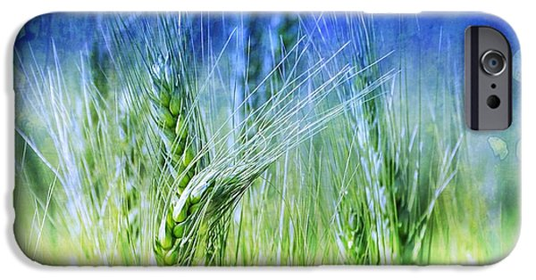 Agriculture iPhone Cases - Green Wheat Fields India Rajasthan 11 iPhone Case by Sue Jacobi