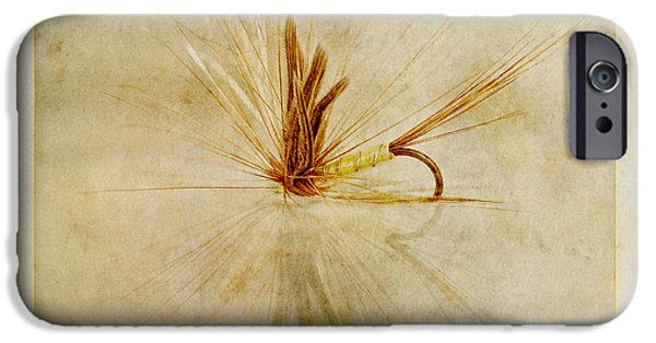 Thread iPhone Cases - Greenwells Glory iPhone Case by John Edwards