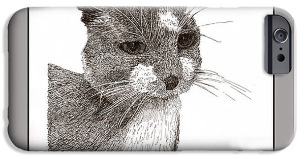 Cat Drawing Drawings iPhone Cases - Grey cat number 12 iPhone Case by Jack Pumphrey