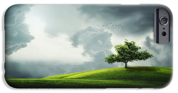 Timing iPhone Cases - Grey clouds over field with tree iPhone Case by Bess Hamiti