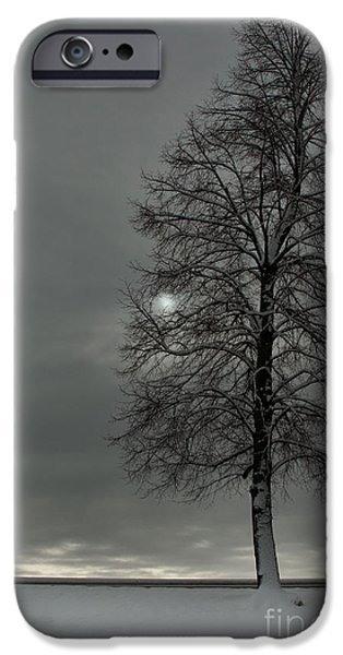 Eerie iPhone Cases - Grey Morning iPhone Case by Steven Reed